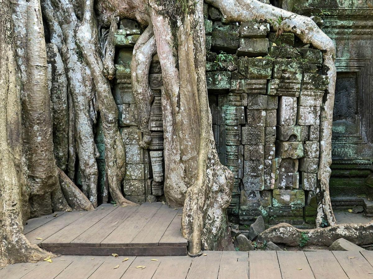 Day 4 : Siem Reap - Departure