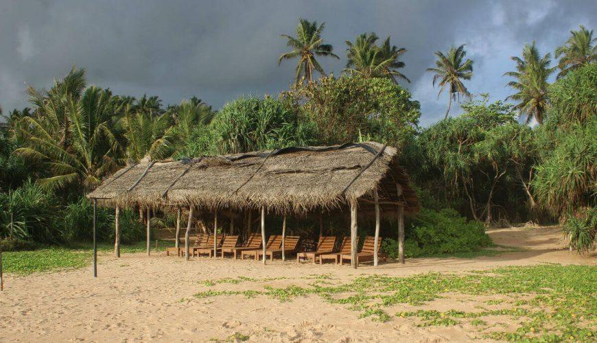 Beach Bentota Sri Lanka