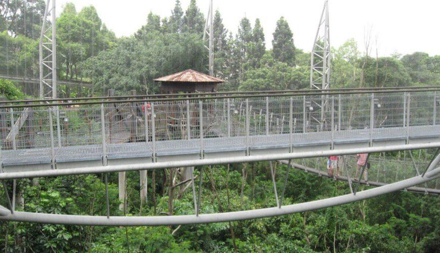 Jurong_BirdPark View