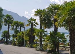 Montreux Lake Geneva