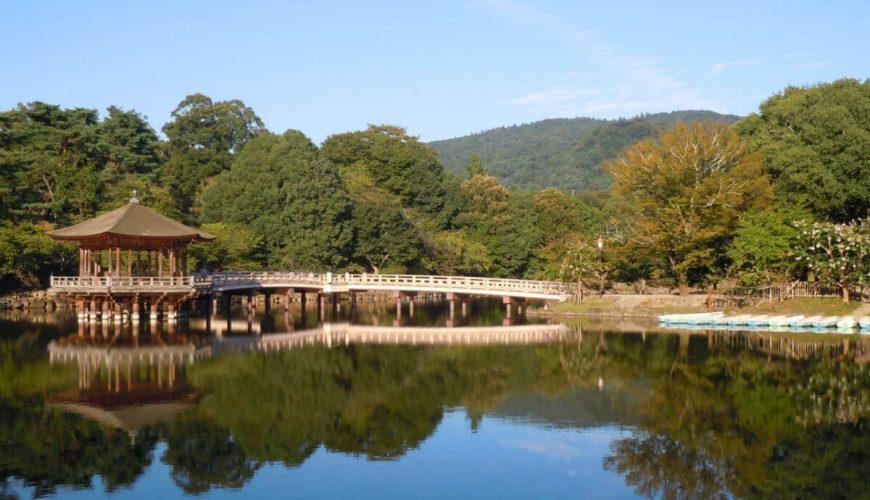 Nara tour package