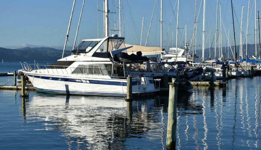 wellington-new-zealand-city-harbour